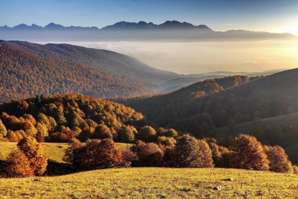 Autunno nel Pian del Cansiglio visto dal monte Pizzoc