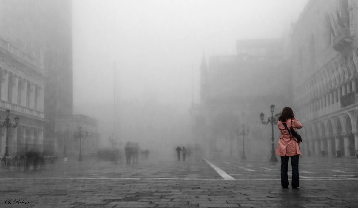 Detteglio nella nebbia